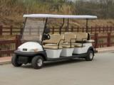 工厂直销电动观光车,高尔夫球车 白色11座A1S8 3