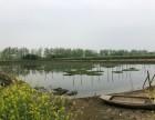 向阳湖农场养殖水面三年租赁权