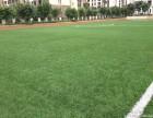 北京批发人工草坪厂家假草坪