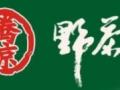 腾琼野茶王加盟