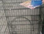 新买四个月猫狗笼子
