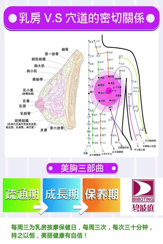 上海碧波庭丰胸仪器简介,上海碧波庭丰胸仪器价格