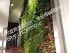 南城植物墙绿化墙别墅花园专业设计施工