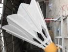 园林景观羽毛球雕塑园林设计美陈道具厂家