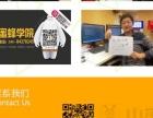 哈尔滨小蜜蜂培训 网站设计 UI设计 0基础包