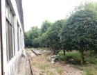 兰溪周边 兰溪服务区附近 厂房 600平米