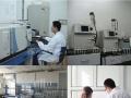 春节特惠 新房测甲醛 除甲醛预约治理送检测