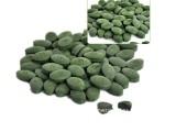 厂家直销批发 保健食品 螺旋藻 螺旋藻片OEM贴牌代加工 品质保