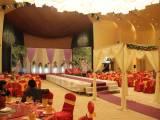 懷化宣傳片直播導播拍攝 制作婚禮跟拍會議活動拍攝