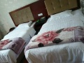 短期宾馆出租,可月租。年租