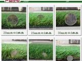 供应贵州黔西足球场专用人造草坪,仿真草坪