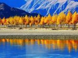 值得拥有的旅游景点地推活动,中国电视旅游联盟厂家供应