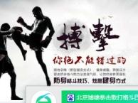 苹果园搏击成人少儿跆拳道拳击散打格斗全能武术培训班