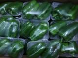 鄭州集裝箱蔬菜禮品箱