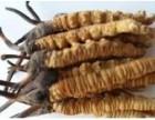 回收冬虫夏草回收燕窝海参怎么吃回收海参