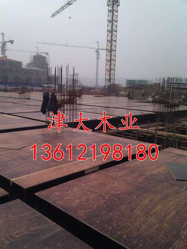 沧州木方价格 津大木业