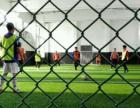 天津 圣西罗室内足球俱乐部,火热招募