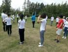 如何提高团队执行力,团队凝聚力