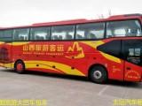 南阳正规旅游包车-商务车-考斯特-中巴-大巴车出租