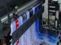 PVC不干胶 普通不干胶 快速可取 质量第一