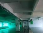 布吉地铁口带装修2400平米厂房招租,厂房形象好