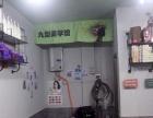 洛王 精致小店 拥有自己一家小店过着安逸的生活。