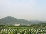 燃灯寺公墓有很多优点让您去选择消费