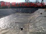 周口养猪场粪水贮存池黑膜