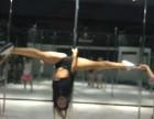 钢管舞 爵士舞 空中舞蹈 基础班教练班速成班包考证