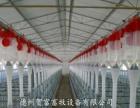 猪用上料设备 养猪自动化料线 河北养猪料线配件批发