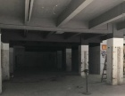 龙瑞电梯商业楼整栋出租