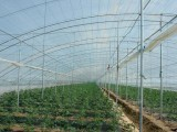 济南pc阳光板厂家,阳光板工程指导安装