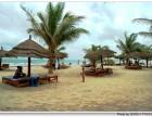 快速办理瓦努阿图 多米尼克快速投资移民