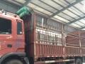 渝北6.8米大货车出租