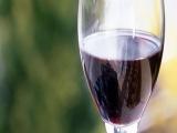 法堡隆葡萄酒 法堡隆葡萄酒诚邀加盟