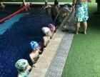 大学城恒温游泳培训班