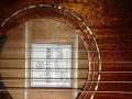 基本全新太阳风面单吉他