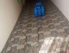 专注 地毯清洁 只做专业的地毯清洁