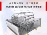南商农科 母猪产床 怀孕母猪分娩床 结实耐用不伤猪厂家直销