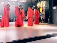 扬州九域专业民族舞培训学校扬州九域舞蹈培训