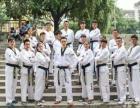 精武道跆拳道馆热情欢迎您的学习