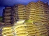 讷河大豆 优质豆类 高蛋白 出口品质 独