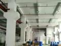 新塘江美标准一楼1500平九成新厂房招租