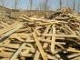 高价回收工地长短方木 模板 钢筋