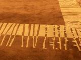 地毯 商用地毯 办公地毯 地垫 尼龙印花地毯