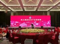 五洲宾馆LED屏幕出租 LED显示屏出租 高清LED大屏出租