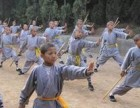 少林寺武术学校的运动量大吗,可以帮助孩子减肥吗