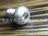 供应M5*10圆头机丝304不锈钢内四方防盗螺丝现货