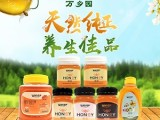 蜂蜜的种类有很多万乡园蜂蜜有利于养生