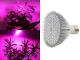 LED植物生长灯的价格